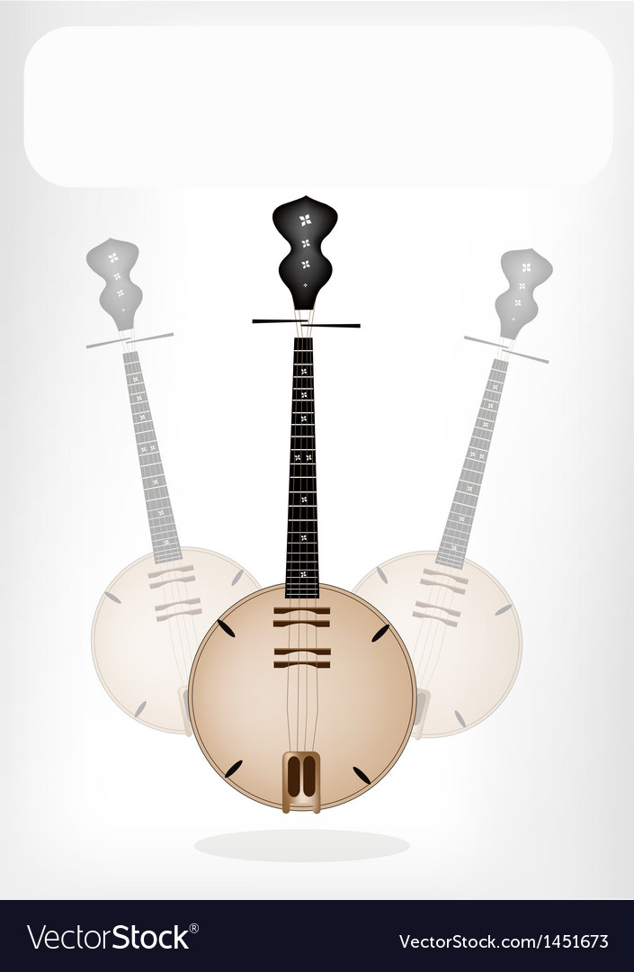 A musical dan nguyet with a white banner vector | Price: 1 Credit (USD $1)