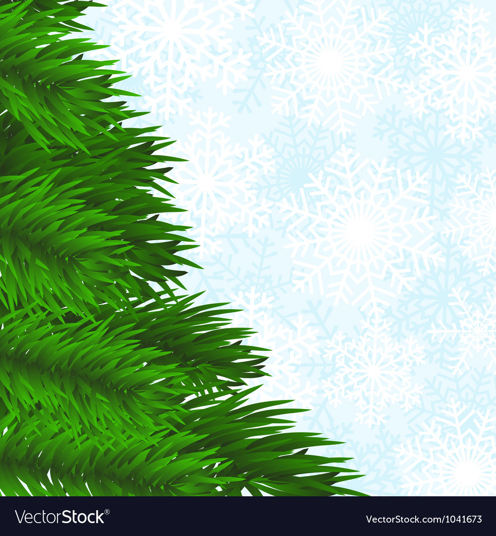 Christmas tree branch and snowflakes background vector | Price: 1 Credit (USD $1)