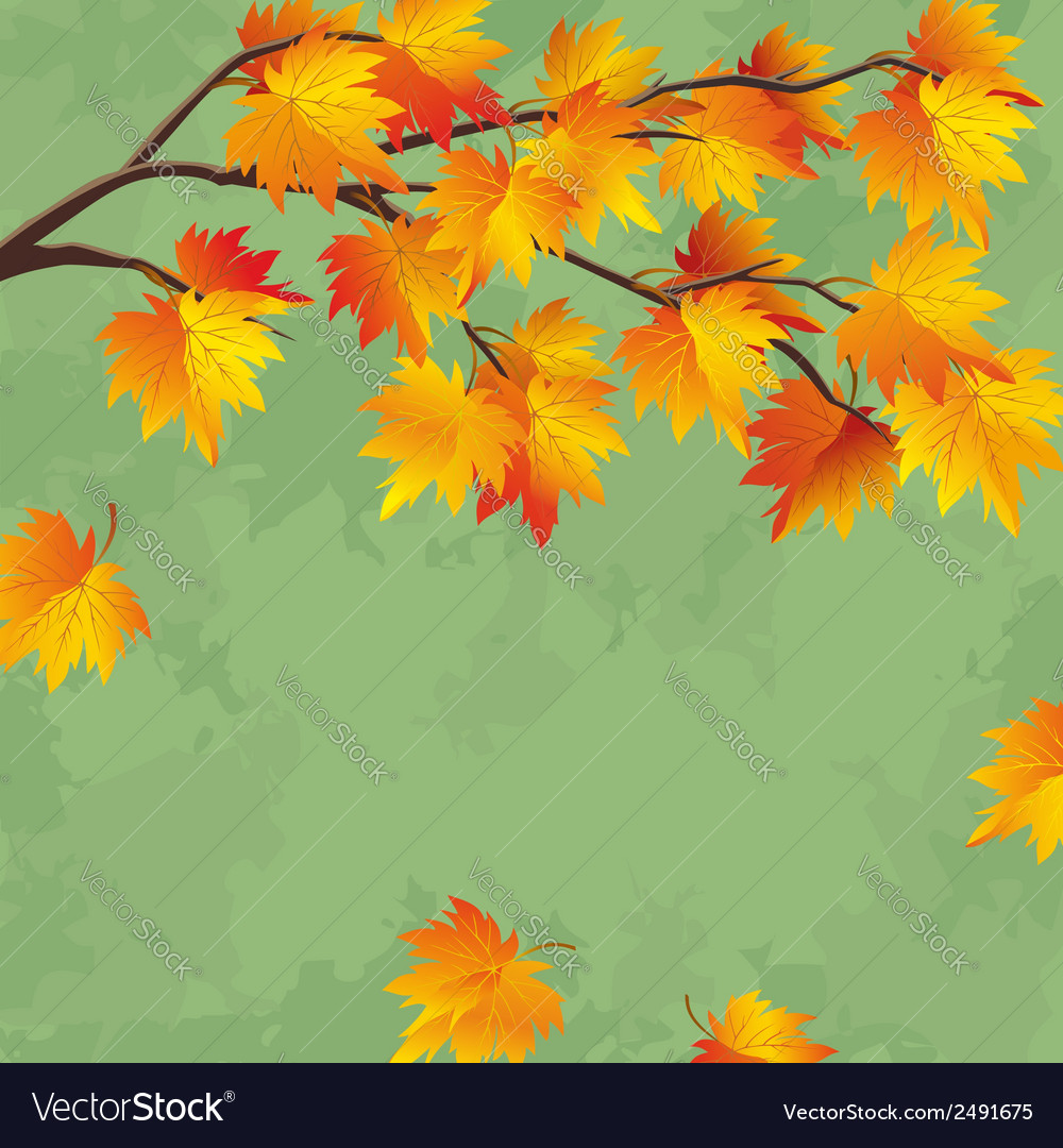 Vintage autumn wallpaper leaf fall background vector | Price: 1 Credit (USD $1)