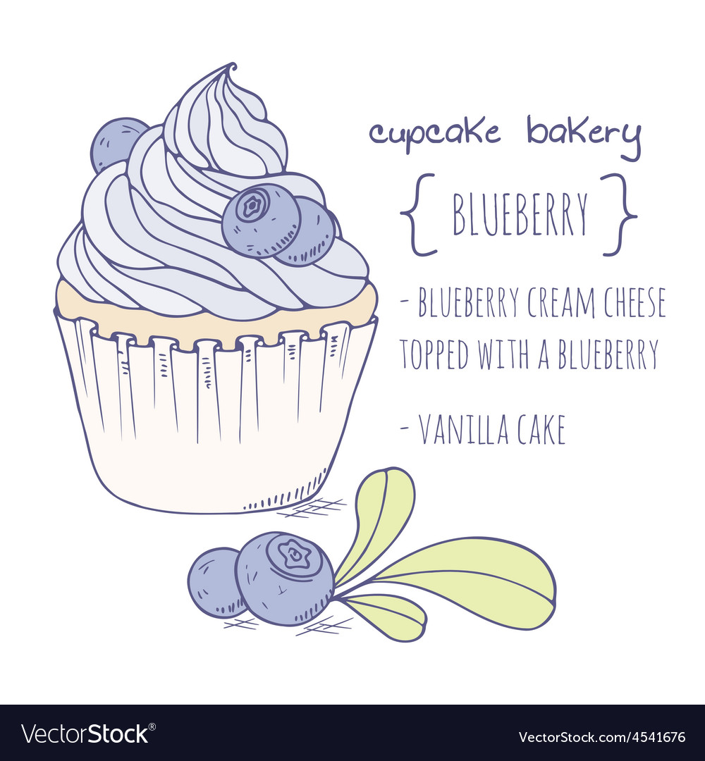 Hand drawn blueberry cupcake vector | Price: 1 Credit (USD $1)