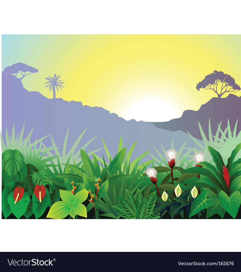 Tropical view vector | Price: 1 Credit (USD $1)