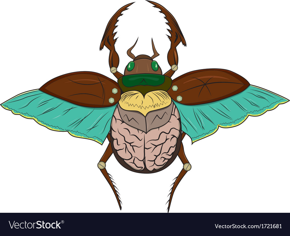 Beetle scarab vector | Price: 1 Credit (USD $1)