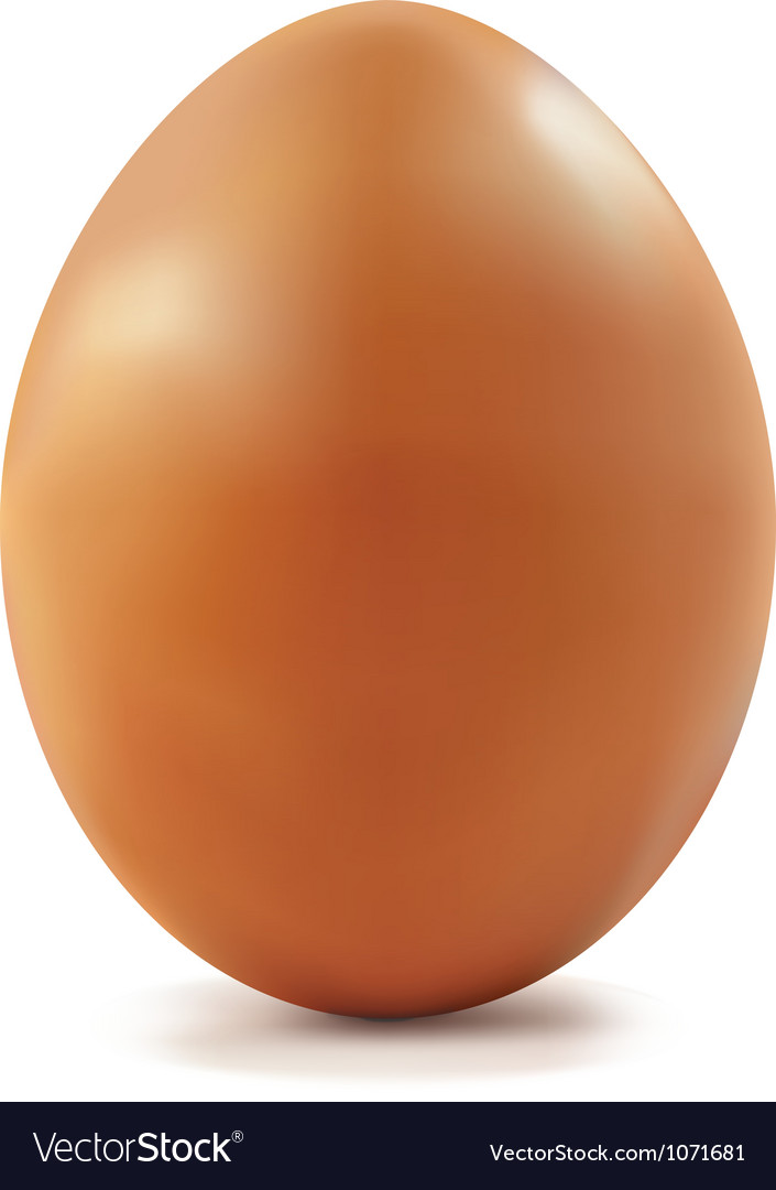 Chicken egg vector | Price: 1 Credit (USD $1)