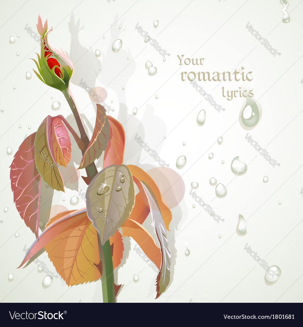 Rosebud with a field for your lyrics romantic vector | Price: 1 Credit (USD $1)