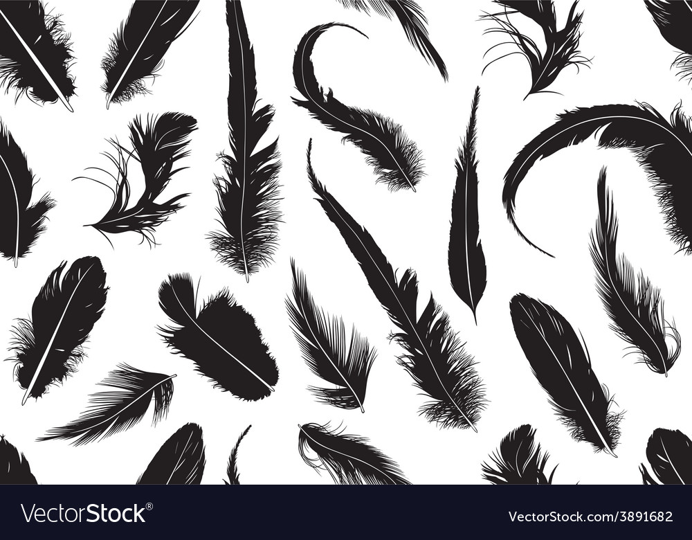 Seamless feathers vector | Price: 1 Credit (USD $1)
