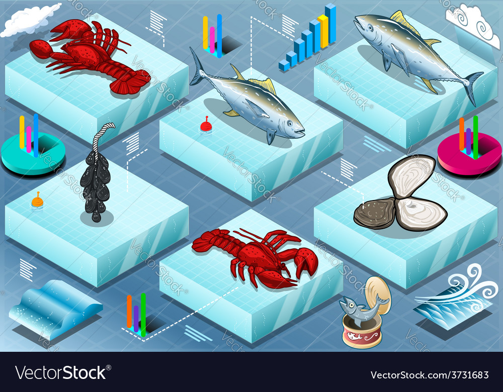 Isometric infographic of marine life vector | Price: 3 Credit (USD $3)