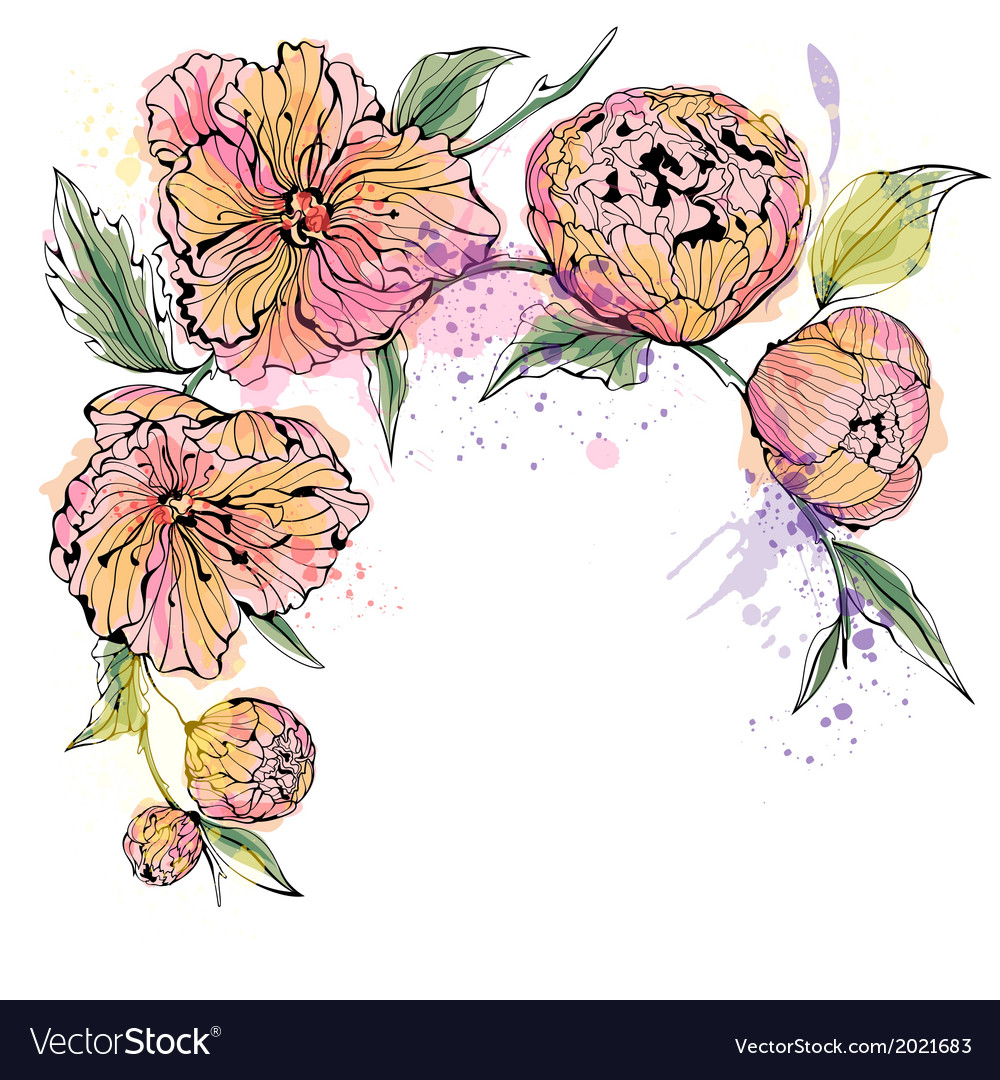 White background with watercolor peony flowers vector | Price: 1 Credit (USD $1)