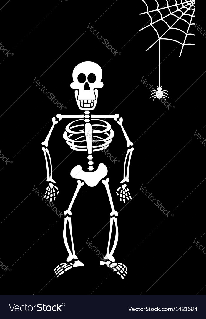 Halloween skeleton on black background vector | Price: 1 Credit (USD $1)