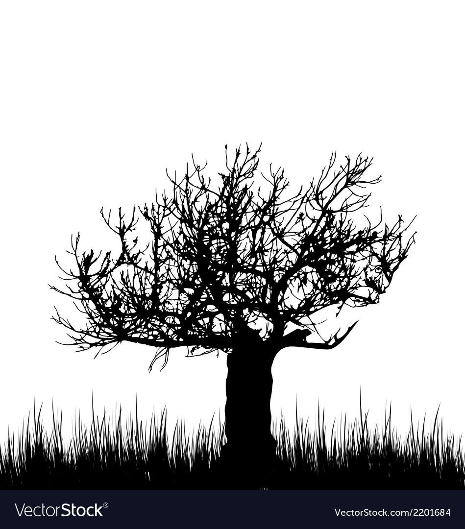 Tree and grass in silhouette are isolated on white vector | Price: 1 Credit (USD $1)