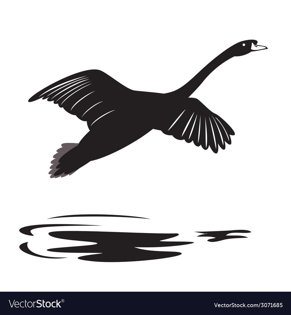 Swan 2 vector | Price: 1 Credit (USD $1)