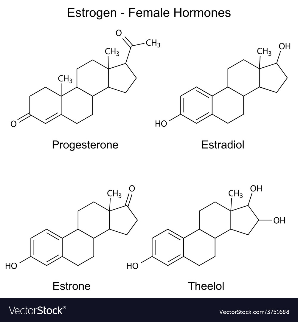 Chemical formulas of female sex hormones vector | Price: 1 Credit (USD $1)