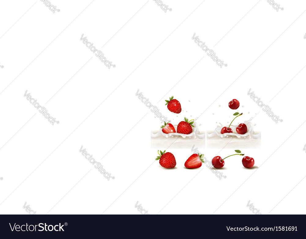 Red strawberry and cherries fruits falling into vector | Price: 1 Credit (USD $1)