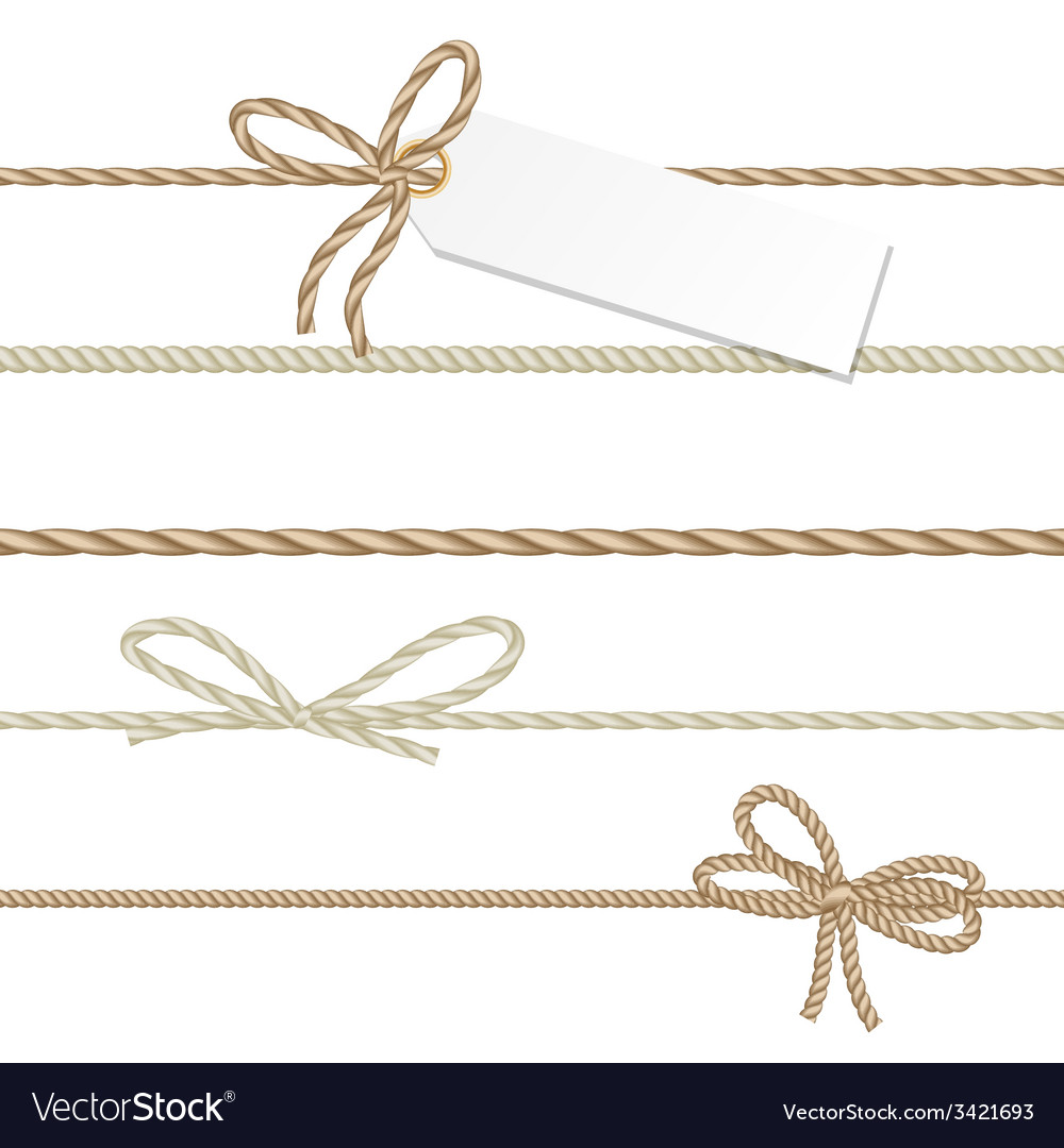Collection of ribbons ahd bows in rope style vector | Price: 1 Credit (USD $1)