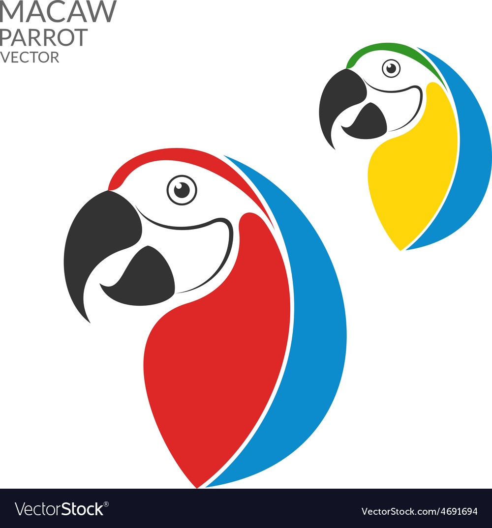 Parrot macaw vector | Price: 1 Credit (USD $1)