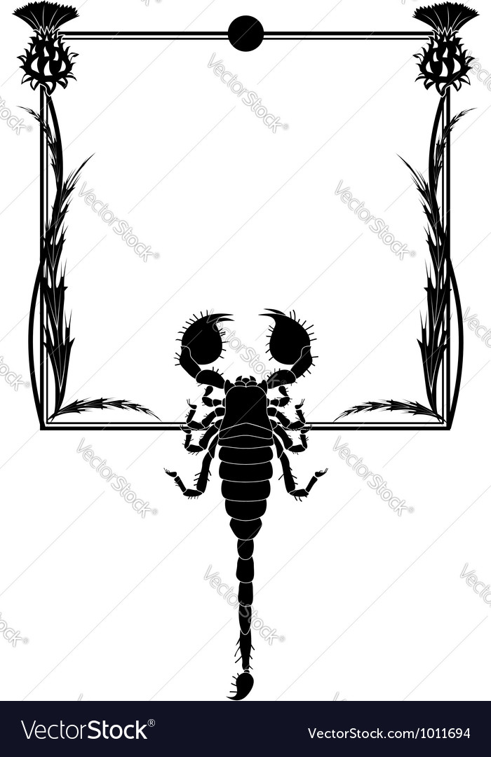 Thistle and scorpion vector | Price: 1 Credit (USD $1)