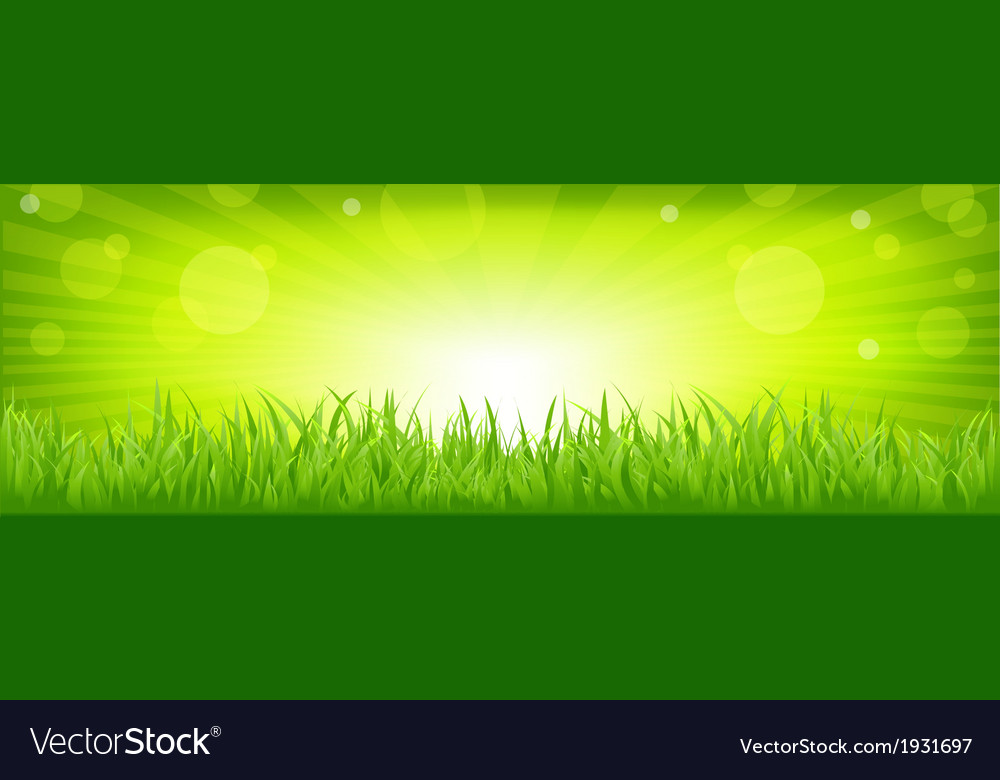 Grass with green background vector | Price: 1 Credit (USD $1)