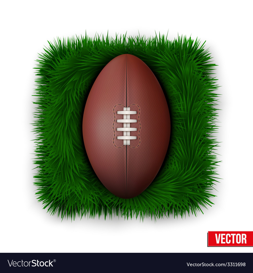 Icon classic rugby ball on green grass vector | Price: 1 Credit (USD $1)