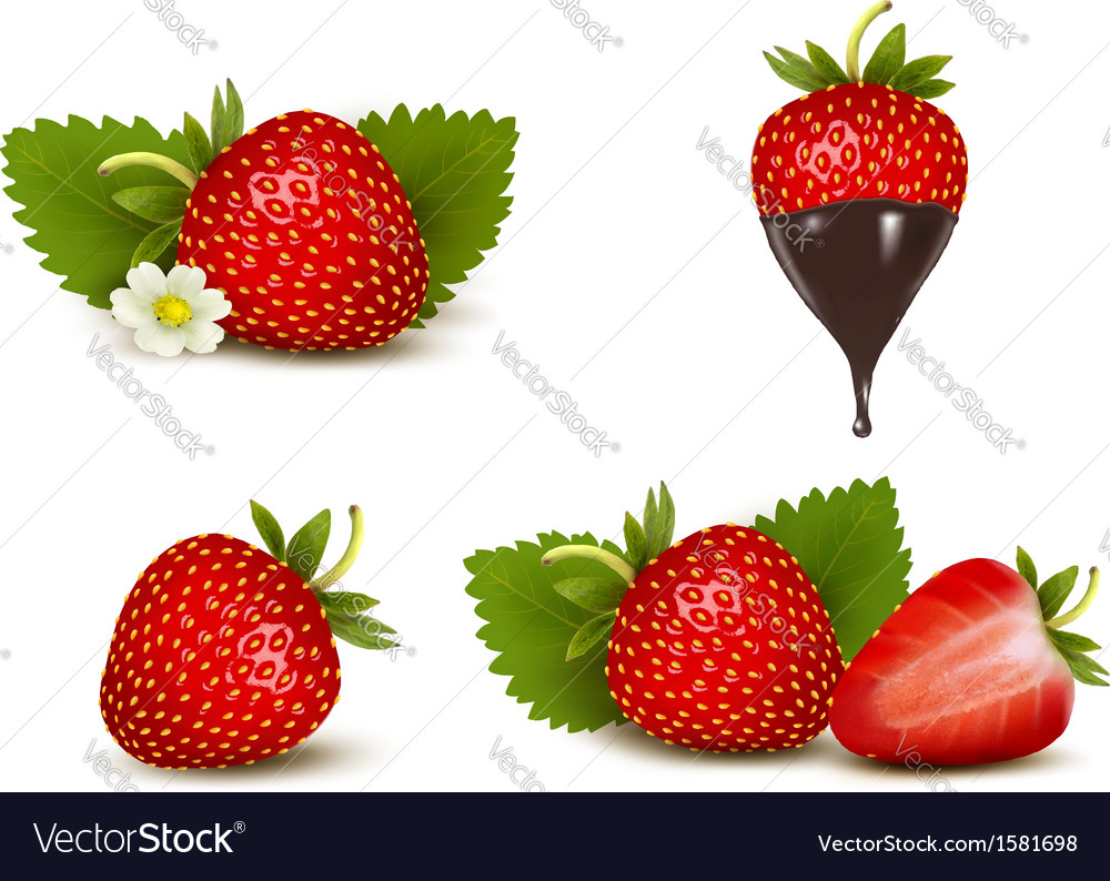 Set of ripe sweet strawberry and flower with vector | Price: 1 Credit (USD $1)