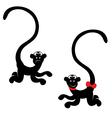 Monkey vector