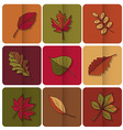 Autumn leaves icon red yellow and green leaves of vector