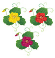 Set with nasturtium vector