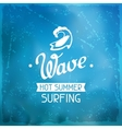 Surfing label on meshes background with stains vector