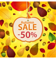 Autumn sale label and leaf background vector