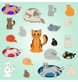 20 cartoon cats vector