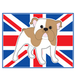 English bulldog flag vector