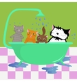 Cats in bath vector