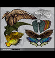 Set of wings vector