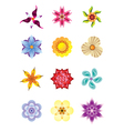 Colourful flower icons set vector