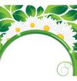 Daisies bouquet vector