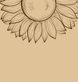 Background with sunflower vector