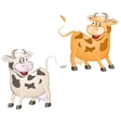 Funny cows vector