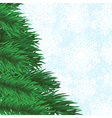 Christmas tree branch and snowflakes background vector