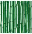 Bamboo seamless vector