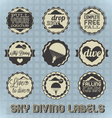 Vintage style skydiving labels vector