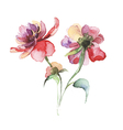 The spring flowers watercolor vector