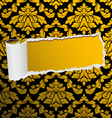 Damask seamless background with hole vector