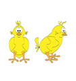 Isolated chick - two views vector