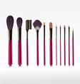 Makeup bushes set vector