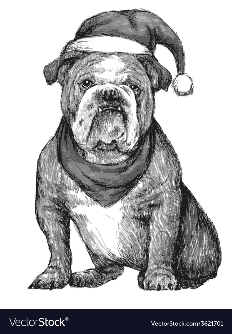 Bulldog with christmas hat vector | Price: 1 Credit (USD $1)