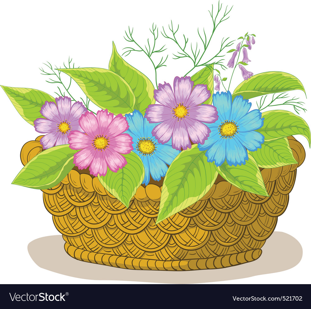 Basket with flowers cosmos vector | Price: 1 Credit (USD $1)