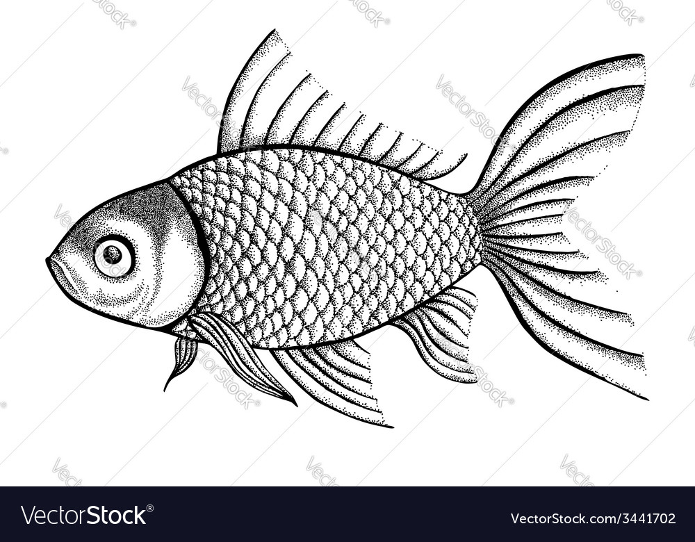 Fish painted in a graphic style points and lines vector | Price: 1 Credit (USD $1)