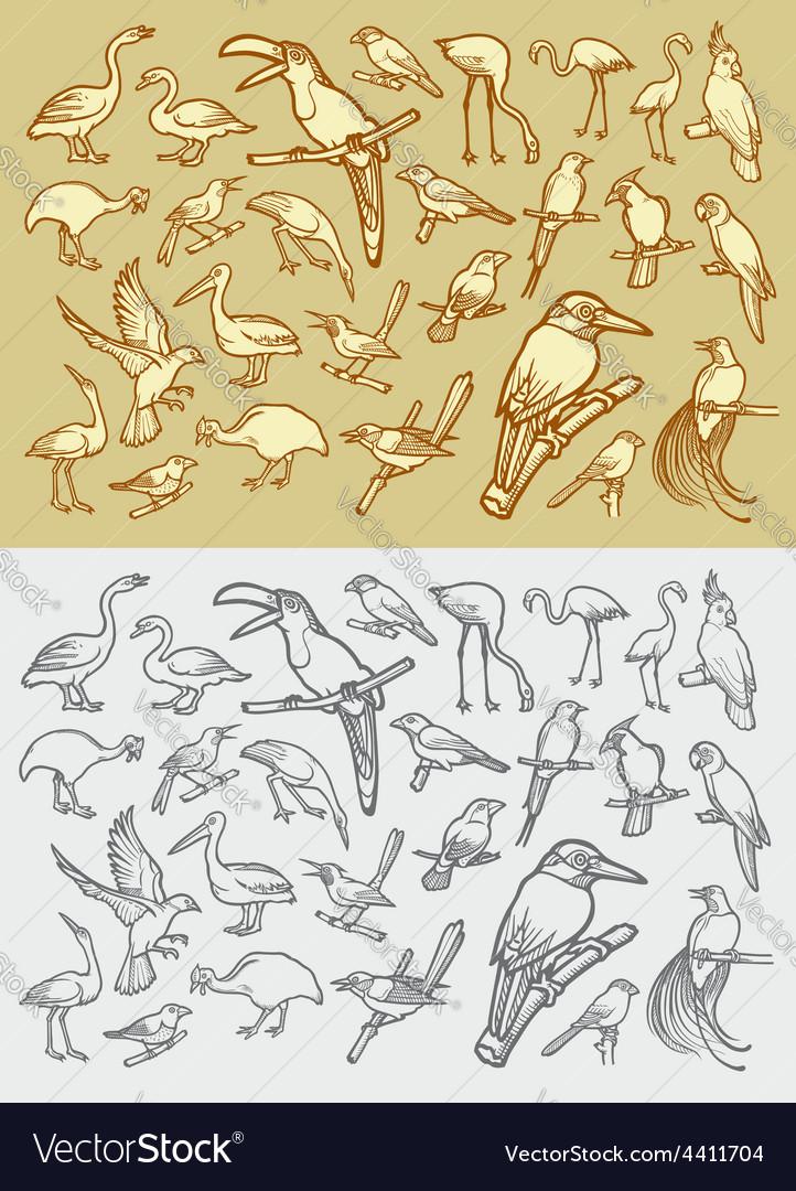 Bird sketch 2 vector | Price: 1 Credit (USD $1)