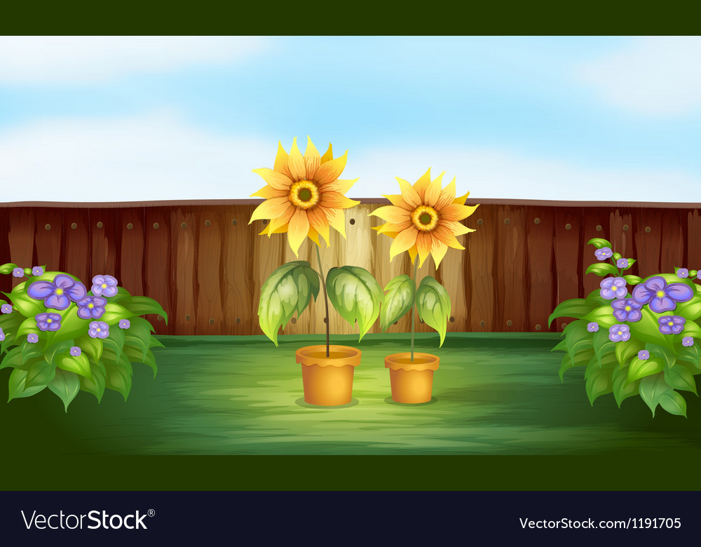 Plants inside a fence vector   Price: 1 Credit (USD $1)