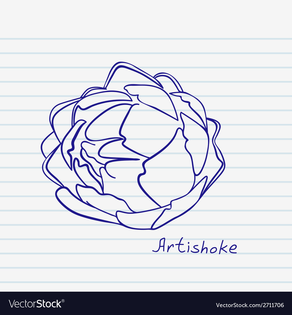 Artichoke doodle vector | Price: 1 Credit (USD $1)