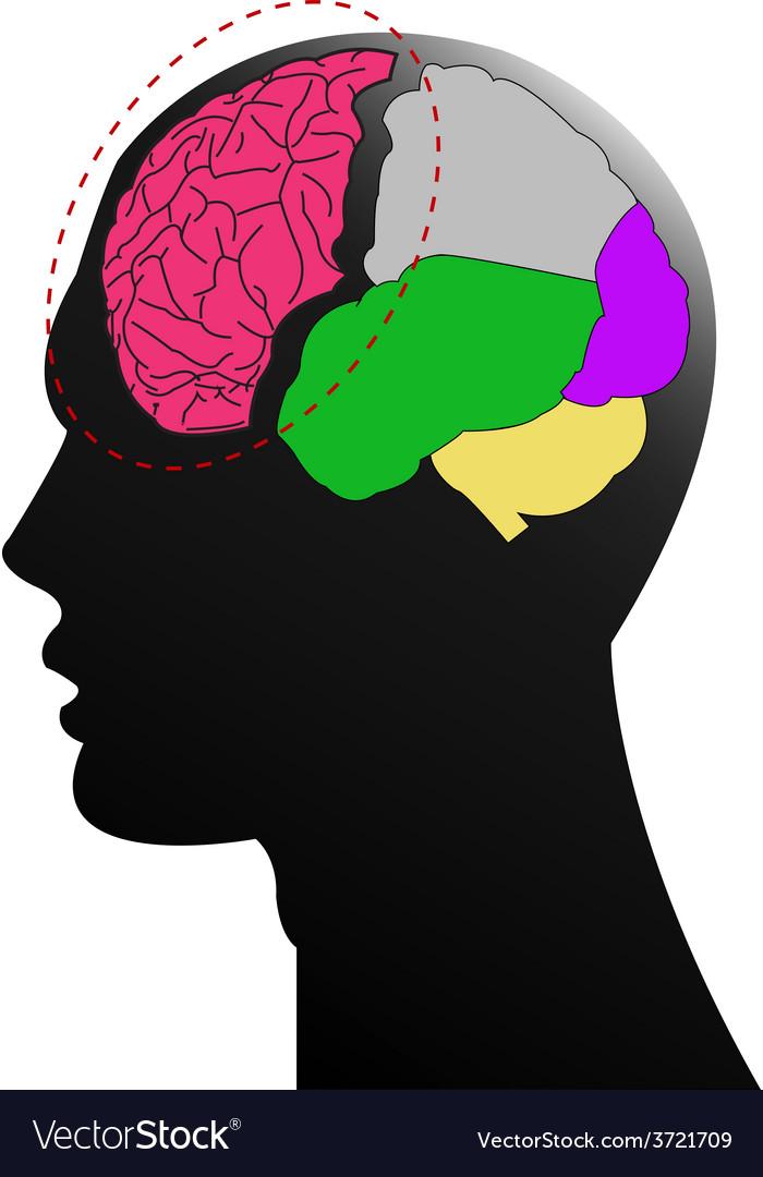 Head brain vector | Price: 1 Credit (USD $1)