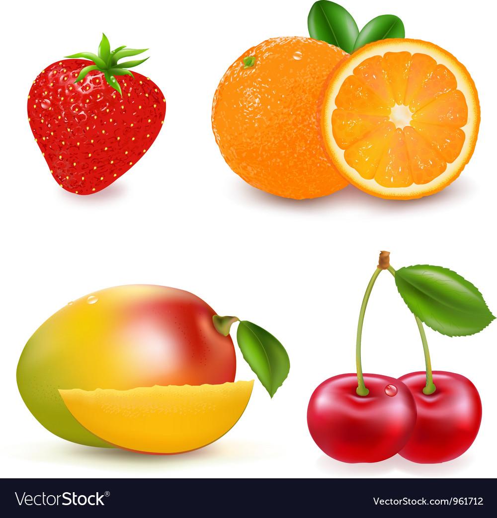 Fresh fruits vector   Price: 1 Credit (USD $1)